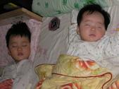 2008前半年全家生活照:1342320424.jpg