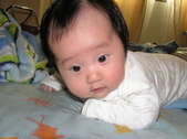 2008前半年全家生活照:1342320426.jpg