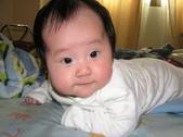 2008前半年全家生活照:1342320427.jpg