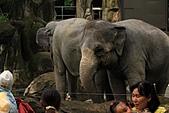 2010-10-24 台北市立動物園:IMG_1379.jpg