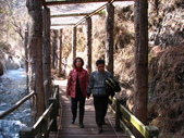 2008-03-04 九寨溝-珍珠灘瀑布:IMG_6619.JPG