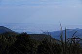 2010-12-05 太平山-翠峰湖:IMG_4535.jpg