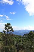 2010-12-05 太平山-翠峰湖:IMG_4544.jpg