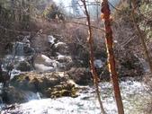2008-03-04 九寨溝-珍珠灘瀑布:IMG_6625.JPG