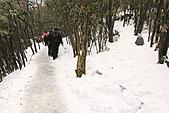 2011-01-24 湖南-張家界天門山:IMG_7563.jpg