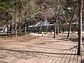2008-03-04 九寨溝-熊貓海:IMG_6420.JPG
