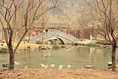 2001-01-27 湖南-張家界黃龍洞:IMG_8584.jpg