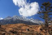 2013-01-21 雲南麗江-玉龍雪山、雲杉坪、藍月谷:IMG_0424.jpg