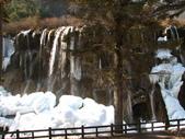 2008-03-04 九寨溝-日落朗瀑布:IMG_6136.JPG