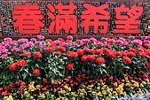 2011-03-05 台北-陽明山賞花記:IMG_9702.jpg