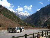 2008-03-04 九寨溝-珍珠灘瀑布:IMG_6643.JPG