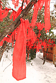 2011-01-24 湖南-張家界天門山:IMG_7575.jpg