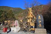 2013-01-20 雲南麗江-玉水寨:IMG_9692.jpg