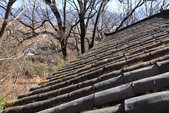 2013-01-20 雲南麗江-玉龍書院、東巴院落、千年古樹群、納西族神泉:IMG_9969.jpg
