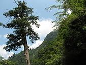 2007-07-23 北橫:IMG_0221