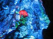2009-01-26 盧迪岩:IMG_0588.JPG