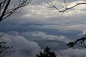 2010-12-05 太平山-見晴懷舊步道:IMG_4789.jpg