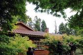 2011-10-08 梨山-福壽山:IMG_3568.jpg