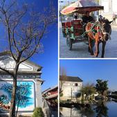 2013-01-18 雲南大理-喜洲民居:相簿封面