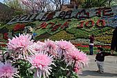 2011-03-05 台北-陽明山賞花記:IMG_9709.jpg