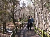 2008-03-04 九寨溝-珍珠灘瀑布:IMG_6636.JPG