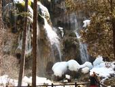 2008-03-04 九寨溝-珍珠灘瀑布:IMG_6599.JPG