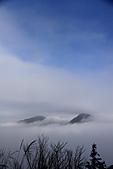 2010-12-04 太平山-山毛櫸步道:IMG_4240.jpg