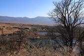 2013-01-20 雲南麗江-玉龍書院、東巴院落、千年古樹群、納西族神泉:IMG_9971.jpg