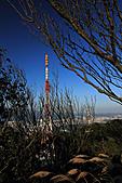 2010-12-27 台北-拇指山 九五峰(二次探勘):IMG_6188.jpg