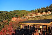 2010-12-06 太平山-太平山莊日出:IMG_4898.jpg