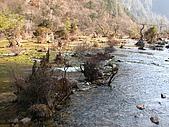 2008-03-04 九寨溝-盆景灘:IMG_6715.JPG