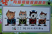2010-12-11 台北-侯硐:IMG_5201.jpg