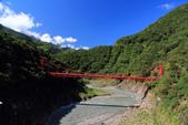 2011-10-06 北橫-->棲蘭:IMG_2312.jpg