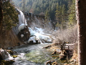 2008-03-04 九寨溝-珍珠灘瀑布:IMG_6615.JPG