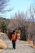 2013-01-20 雲南麗江-玉水寨:IMG_9736.jpg