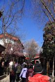 2013-01-20 雲南麗江-束河古鎮、大研古鎮夜景:IMG_0071.jpg