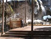 2008-03-04 九寨溝-珍珠灘瀑布:IMG_6600.JPG