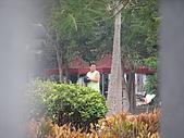 2009-01-20 將軍山公園棒球:IMG_9765.JPG