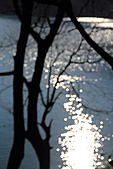 2010-12-12 台北-竹坑 腰潭:IMG_5534.jpg