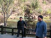 2008-03-04 九寨溝-盆景灘:IMG_6717.JPG