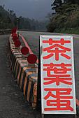 2010-12-04 太平山-北宜:IMG_4048.jpg