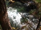 2008-03-04 九寨溝-珍珠灘瀑布:IMG_6622.JPG