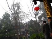 2008-03-08 成都青羊宮:IMG_7340.JPG
