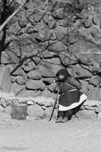 2013-01-20 雲南麗江-玉柱擎天景區-->玉湖村納西古村落(騎馬):IMG_9772.jpg