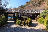 2013-01-20 雲南麗江-玉龍書院、東巴院落、千年古樹群、納西族神泉:IMG_9926.jpg