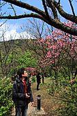 2011-03-05 台北-陽明山賞花記:IMG_9743.jpg