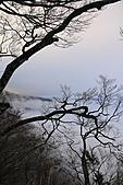 2010-12-04 太平山-山毛櫸步道:IMG_4294.jpg