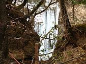 2008-03-04 九寨溝-熊貓海:IMG_6403.JPG