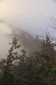 2010-12-04 太平山-山毛櫸步道:IMG_4295.jpg