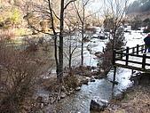 2008-03-04 九寨溝-盆景灘:IMG_6721.JPG